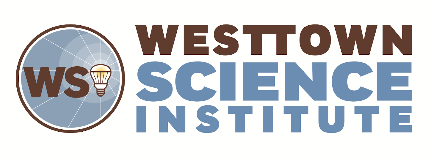 WSI-_logo